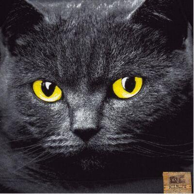 Imagem 2 do produto Camiseta longa em malha Gato - CDC Tshirt