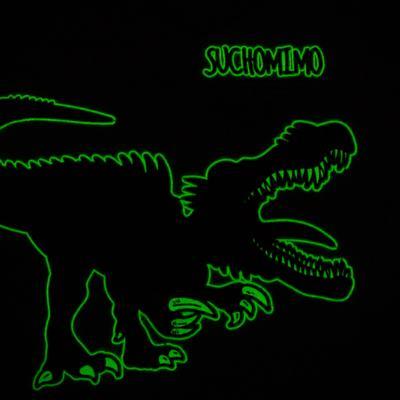 Imagem 5 do produto Pijama longo que Brilha no escuro Dinossauro - Cara de Criança - L2356 DINOSSAURO L PJ-LONGO M/MALHA-2
