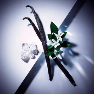Imagem 4 do produto Lancome La Vie Est Belle L Eclat Pour Femme Eau de Parfum Perfume Feminino
