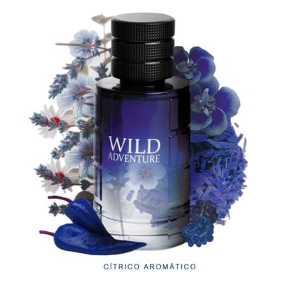 Imagem 3 do produto Wild Adventure Linn Young Perfume Masculino - Eau de Toilette - 100ml