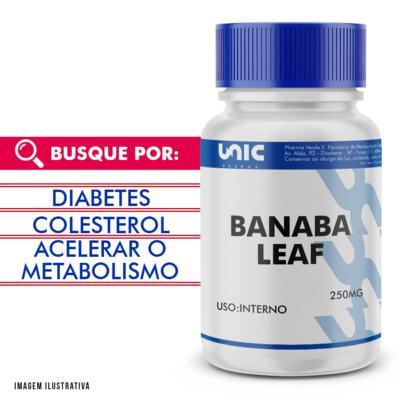Imagem 1 do produto Banaba Leaf (Lagerstroemia Speciosa) 250mg - 120 Cápsulas