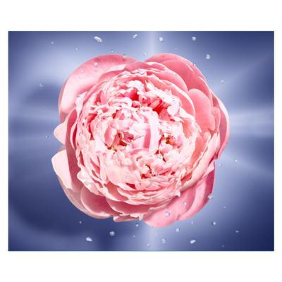 Imagem 3 do produto La Vie Este Belle En Rose Lancôme Perfume Feminino - Eau de Toilette - 50ml